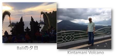 Baliの景色.jpg