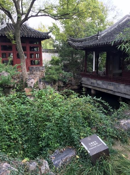蘇州の庭園.JPG